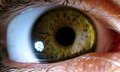 Jamie's Eye (heatspine) Tags: macro eye canon fineart ethereal artisticphotography humaneye unconventional macroeyeball macroeyephotography heatspine humaneyephotography heatspinephotography canon5dmarkiicanonphotographycanonphotosoriginalphotographybestofflickrbestphotographyrawmostinterestingnevergrowupvintagefunphotos abstractphotographyinterestingphotography