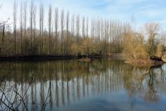 Brandon Marsh, Goose Pool (kestrel49) Tags: uk england europe britain naturereserve gb 12 warwickshire 2012 brandonmarsh brandonmarshes