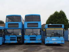 AM PM Travel 729 N729JNO - 694 N694JNO - 136 R136RLY (Will Swain) Tags: travel dublin bus am depot pm 136 tyseley metroline 729 694 r136rly dld36 n729jno n694jno 96d282 96d258 rh282 rh258