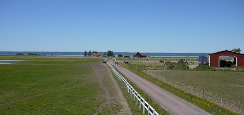 Visingsö 2011