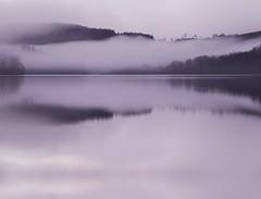 morning whispers(explore) (kenny barker) Tags: trees winter mist water fog fleurs landscape lumix dawn scotland day zen treeline et paysages lochard landscapeuk panasoniclumixgf1 welcomeuk kennybarker