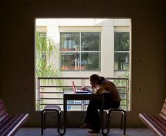 Ivette Alfonso - Biology Major (fiu) Tags: students campus miami em biology panther floridainternational maidique ftmag