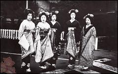 Gion Maiko Book (kofuji) Tags: kyoto maiko geiko geisha