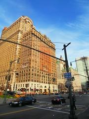 New York(236)