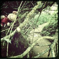 Ferkel: Hiking-Tour