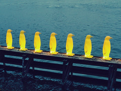 Yellow penguins (bruneq) Tags: art yellow museum modern river penguins exhibition vltava kamp