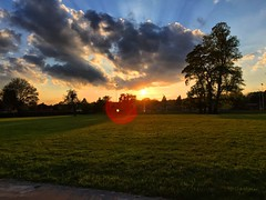 Lens Flare Sunset (Marc Sayce) Tags: park sunset lens tramonto hampshire flare alton sunbeams anstey
