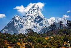 Facing the Incredible (TranceVelebit) Tags: above park nepal sky cloud mountain snow clouds forest snowy peak national ama np himalaya khumbu himalayas towering glacial dablam sagarmatha