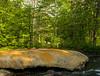 Geyser on Geyser Creek, Saratoga Springs, NY (Diacritical) Tags: saratogasprings geyser f80 35 iso500 0ev summiluxm11435asph centerweightedaverage leicacameraag ¹⁄₁₂₅sec geysercreek ¹⁄₁₂₅secatf80 leicamtyp240 may252016 douglascpalmer2014
