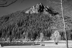 Mountain Bikers - Rattlesnake Lake BW (Don Thoreby) Tags: cascades rattlesnakeledge cascademountains cascaderange rattlesnakelake