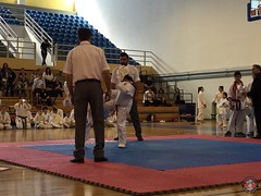 stefanou_15_5_2016_knockdown_89