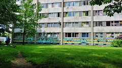 Scarpulla & Gijs Vanhee / Nieuw Gent - 26 mei 2016 (Ferdinand 'Ferre' Feys) Tags: streetart graffiti belgium belgique belgië urbanart graff ghent gent gand graffitiart arteurbano artdelarue urbanarte scarpulla gijsvanhee