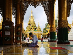 Follower of the Buddha making a pilgrimage to the Shwedagon (Bn) Tags: myanmar birma burma yangon rangoon former capitol street candid monk bikes taxi city six million people buddhist temple botataung pagoda botahtaung gautama buddha hair 2500 years old religions locals 40m high seaport dazzling road car gold kyats umbrella sunshine fietstaxi gate entree hollow destroyed rebuild colonial overwhelmed infrastructure slums pilgrims buddism traffic cycling shwedagonpagoda 2600years 99m cars busy devotees prayer monks golden zedi daw great birds heaven earth pilgrim 50faves topf50 contemplation