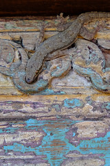 (Valerio Soncini) Tags: wood beach philippines carving bohol gecko ph panglao philippinen alona centralvisayas pilippinen