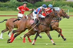 a MH1_2495 (bajandiver) Tags: rutland polo equestrian horses bajandiver
