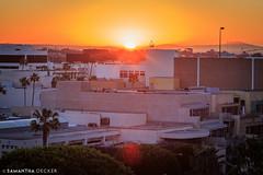Sunrise Over the Concrete Jungle (Samantha Decker) Tags: california ca sunrise santamonica socal canonef135mmf2lusm fairmontmiramar canoneos6d samanthadecker socal16