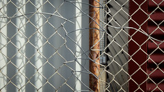 Mended Breach (Theen ...) Tags: adelaide breach chainlink college cord corrugated fence fencepost iron lumix mended metal painted post red rust senior shadow sheds sutured thebarton theen threaded white wire