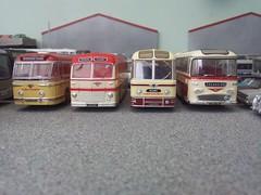 The heritage fleet (quicksilver coaches) Tags: panorama model leopard oo leyland fanfare diecast roadmaster weymann 176 reliance aec plaxton code3 duple royaltiger oxforddiecast albioncoachways