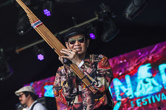 Paradise Bangkok Molam International @ Lunar Festival 1 (preynolds) Tags: musician music smile sunglasses festival concert birmingham raw dof stage gig livemusic noflash thai mark2 stagelights khaen tamron2470mm canon5dmarkii counteractmagazine bambooharmonica