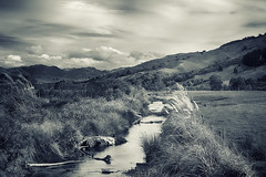 The Stream (Little Booby) Tags: new nature water monochrome clouds landscape island log stream collingwood south zealand fields grasses tussock