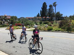 IMG_6893 (younggtx) Tags: david cycling ken victor terri teresa pv palosverdes fathersdayride