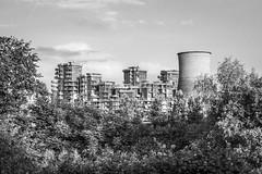 cartoline operaie (Zioluc) Tags: park urban tower torino turin cooling parcodora luciobeltrami