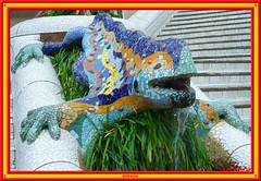 The Salamander, Barcelona (vicbrasil) Tags: barcelona madrid people men children spain women bilbao zaragoza santiagodecompostela montserrat oviedo sansebastian pamplona santillanadelmar