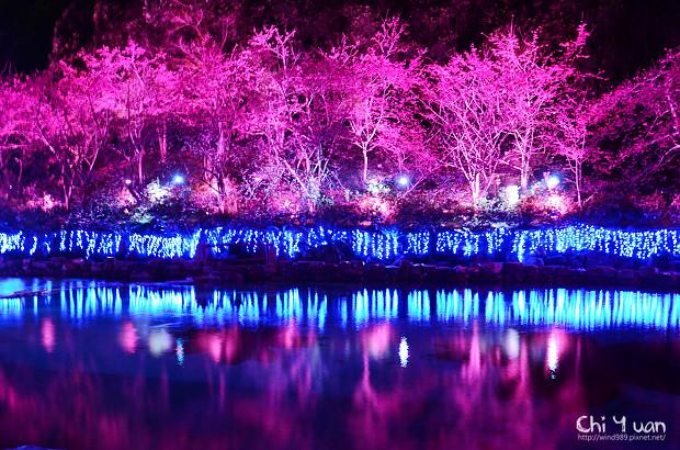 九族文化村櫻花祭09.jpg
