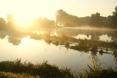 Vecht (Harry Mijland) Tags: autumn sun mist holland fall fog herfst nederland maarssen oudzuilen dearharry harrymijland opbuuren