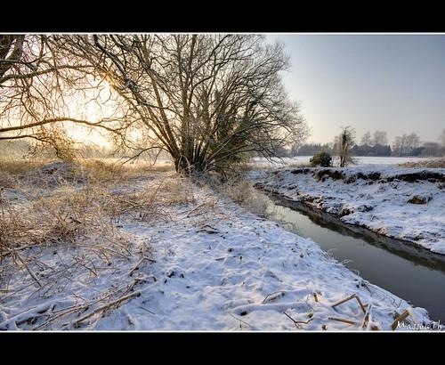 hiver-099