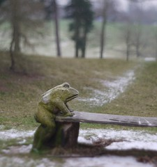 Croaking it (Grooover) Tags: park christchurch bench suffolk carving frog toad ipswich grooover