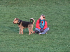 (harris948) Tags: dog castle scotland highlands scottish ellie airedale moray duffus vixs vixsvisit