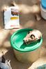 Cat Scull (Lauren Barkume) Tags: africa southafrica photowalk artdeco johannesburg joburg 2012 gauteng johanesburg eastrand photowalkers laurenbarkume gettyimagesmeandafrica1
