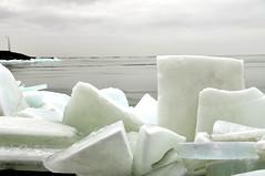 Kruiend ijs (Drifting ice) (Kim van Dijk photography) Tags: winter lake cold ice water netherlands nikon nederland flevoland lelystad ijsselmeer ijs houtribdijk d90 markermeer nikond90 kruiend kimvandijk