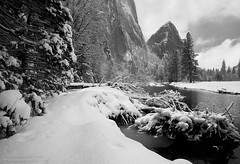 Snowy Banks, Yosemite, CA (Sudheendra Kadri) Tags: california trees snow nature water northerncalifornia canon landscape flora natural merced valley yosemite yosemitenationalpark sierranevada valleyview yosemitevalley centralcalifornia mercedriver sudhi landscapephotography canon5dmarkii sudheendrakadri sudheendrakadricom