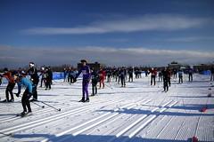 Great Purple Suit - Copy (ActiveSteve) Tags: winter ski skiing racing gatineau getoutthere skateskiing gatineauloppet