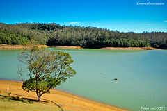 Pykara Lake, OOTY (Kanishka **) Tags: trip holiday plant tree water fun sand weekend bluesky boating jolly seashore ooty samrat greenwater kanishka pykaralake kanishkasamrat canon550d