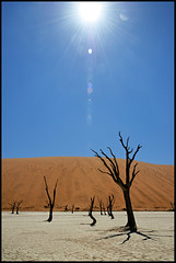 Dead Vlei (lud68) Tags: world trip travel blue summer sky sun france hot art love water landscape dead photography three fly sand nikon shoot desert no picture like best heat namibia chaud francais chaleur vlei namibie sossuvlei
