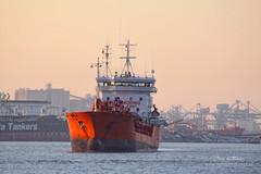 Alina (Peet de Rouw) Tags: haven holland port rotterdam ship rozenburg peet europoort portofrotterdam denachtdienst havenfoto peetderouw
