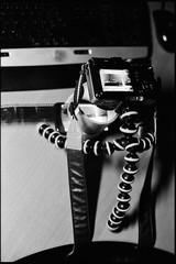 my scanner (dxbach) Tags: macro film up backlight analog lens lumix md focus phone close minolta tripod olympus scan tape 400 epson fujifilm neopan manual ghetto negatives 5014 rokkor v500 2017 x500 gorillapod epl1