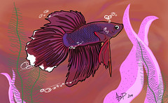 Pez Betta SD (Alan Puentes) Tags: dog black alan ps p tablet ilustracion illustraction photophot
