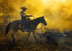 Late Day Burn 1971 (nikonmike99) Tags: horse animal fire cowboy burning hoy kansas prairie rider tallgrass chasecounty