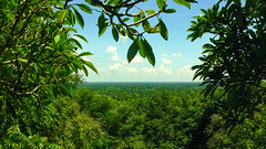 (Kelly Rene) Tags: travel blue trees sky color tree green nature clouds rural landscape countryside asia cambodia southeastasia day afternoon view outdoor frame serene kh lush battambang indochina watbanan