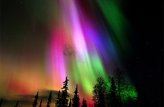 Colorful Aurora Borealis Over Finland | Photography by ©Finnish Tourist Board (manbeachrm) Tags: colorful colorfull colorfully colorfulfood colorfulleaves colorfulsky colorfulclouds colorfullife colorfulday colorfulcolorado colorfulhair lifeiscolorful colorfulart colorfulnails colorfulmakeup livecolorfully colorfultattoo colorfulshot becolorful colorfulliving instacolorful abmlifeiscolorful scatticolorful piclogy colorfullycrafted abmlifeiscolorfull eatcolorful amblifeiscolorful mycolorfulmoment