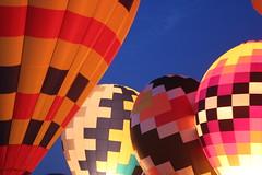 Balloon fest (Tricia Lynne) Tags: blue hour hotairballoon balloonfest