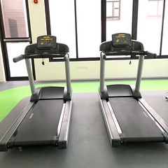 PAVIGYM Endurance Zoning & Markings (Pavigym Int) Tags: machinery flooring fitness endurance markings active zoning gymequipment functionaltraining gymflooring trademill functionalzone gymfloortiles functionalmarkings