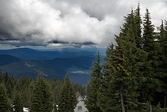 Tops (Herculeus.) Tags: trees sky plants house snow mountains tree rooftop pine clouds forest buildings outside outdoors day outdoor ngc valley conifer treetop cascaderange mountaintops 5photosaday