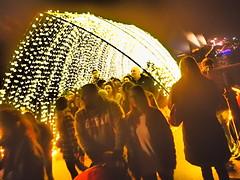 Vivid, Sydney, Australia (Pranav Bhatt) Tags: vivid sydney australia light lights bright night dark lit neon projection festival rays opera operahouse sydneyoperahouse harbour glow beam color colour colorful colourful rainbow shine shiny shining