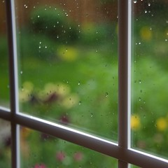 A Spring Shower (The Good Brat) Tags: window rain weather garden shower us spring co