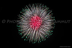 Tal-Gilju Fireworks Factory, Imqabba (Tony Sammut) Tags: canon canoniani canonef24105mmf4lisusm malta talgiljufireworksfactoryimqabba pyrotechnics flickr finegold fireworks feast frameit firestars flickrclickx